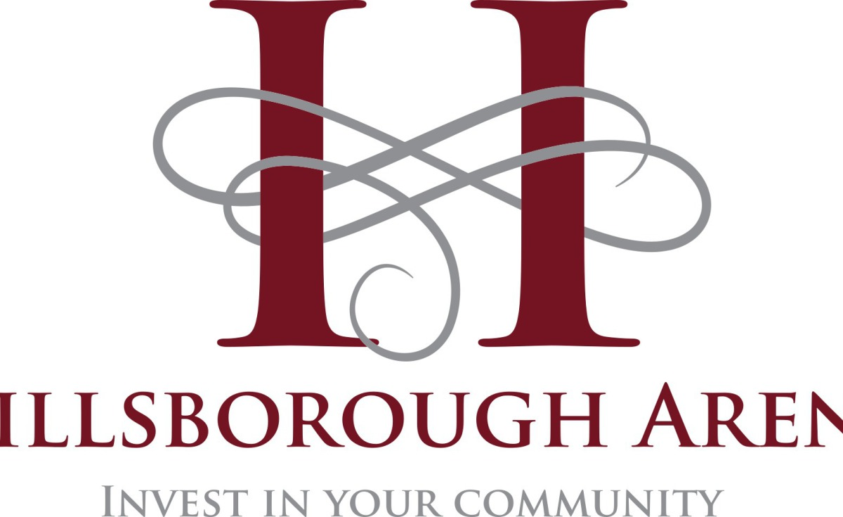 Wedding chair & sashes